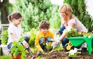 Happy mother with her children gardening. [url=http://www.istockphoto.com/search/lightbox/9786778][img]http://dl.dropbox.com/u/40117171/family.jpg[/img][/url] [url=http://www.istockphoto.com/search/lightbox/9786750][img]http://dl.dropbox.com/u/40117171/summer.jpg[/img][/url]