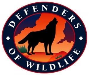 defenders-of-wildlife