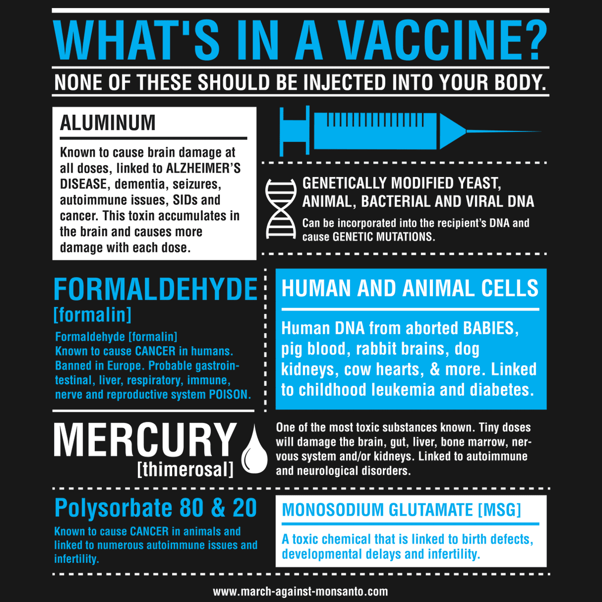 What's In Vaccines
